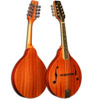 Morgan Monroe MAM-100 A Style Mandolin - Bluegrass Instruments