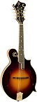 The Loar LM-700-VS Mandolin Supreme Series - Bluegrass Instruments