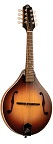 The Loar LM-290-MS Contemporary A-Style Mandolin - Bluegrass Instruments