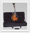 Savannah SF-100-SN F Model Mandolin - Bluegrass Instruments