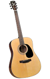 Bristol BD-16 Dreadnaught Acoustic Guitar - Bluegrass Instruments