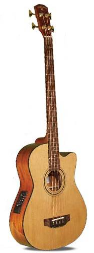 Indiana Scout Acoustic Bass Guitar